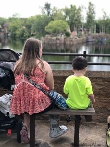 sitting at Animal Kingdom